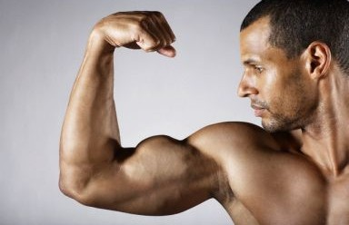 biceps_flexionado-384x248