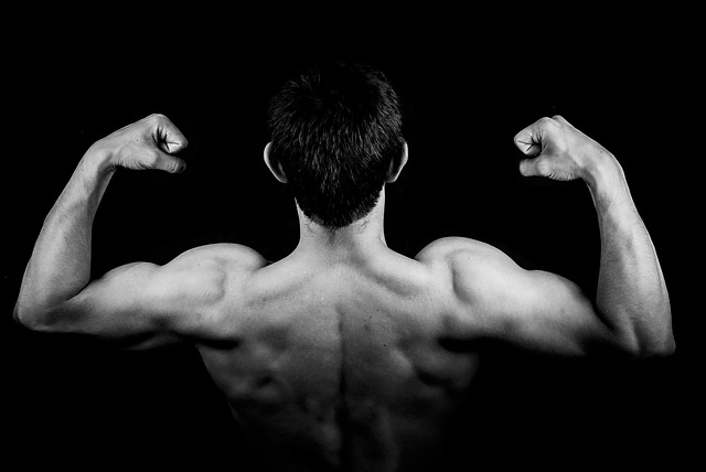 man back muscles