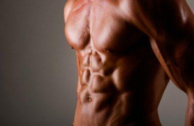 musculos-grandes-404x248